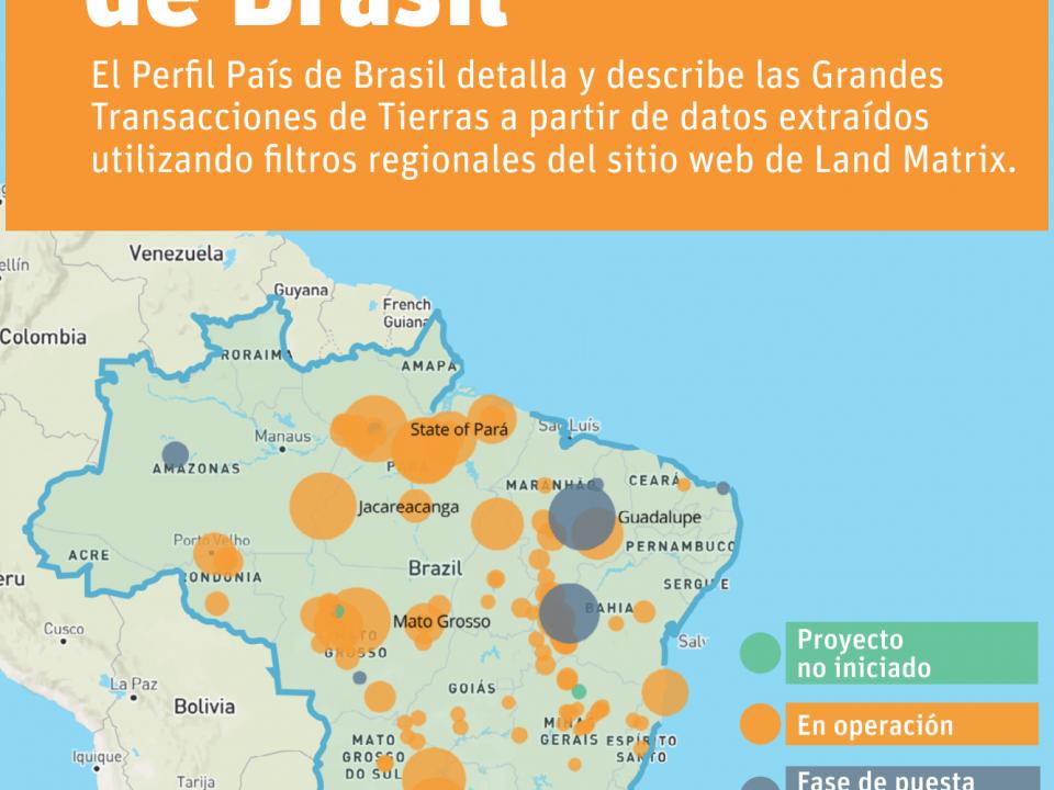 Perfil Pais Brasil