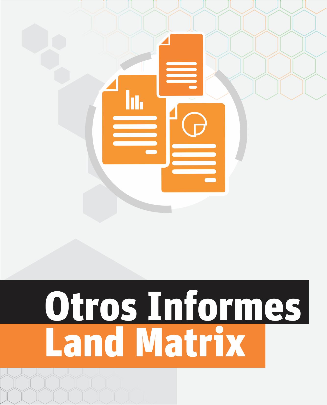 Otros Informes Land Matrix