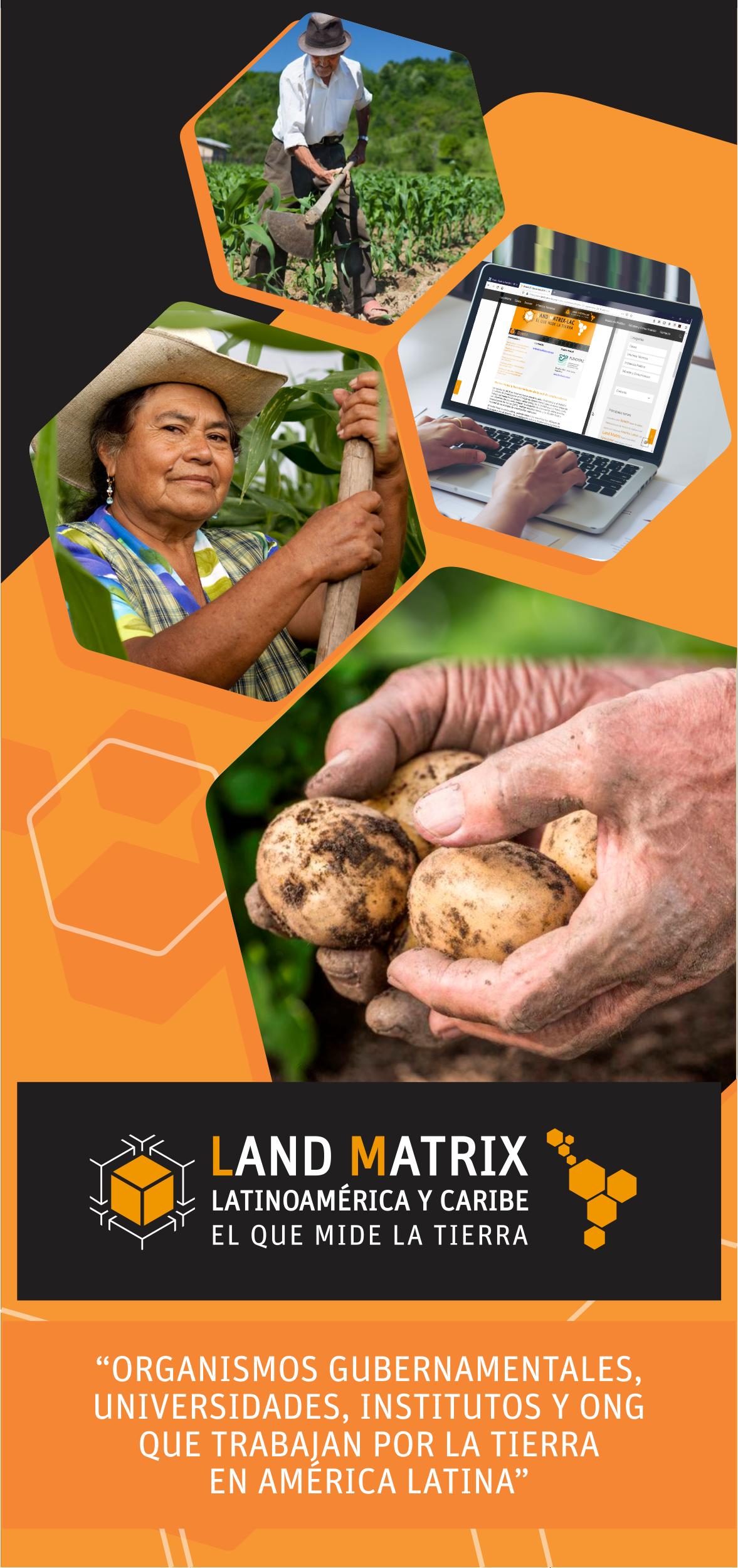 instituciones que desarrollan algún trabajo en favor del acceso a la tierra